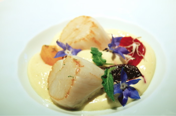 Scallops at L'Astrance
