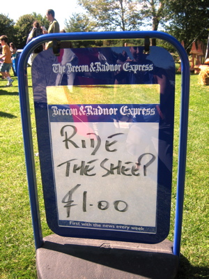 ride the sheep at the Summer Fayre in Brecon Beacons