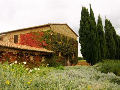 Poggio di Sotto, Castelnuovo dell'Abate, Montalcino, Italy