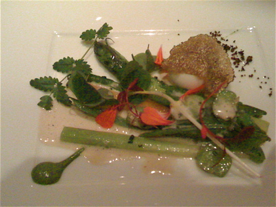 Salad of spring vegetables with wild shoots, warm quail egg and truffle at the Ledbury