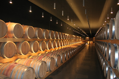 Barrel room at bodegas Cepa 21 in Castrillo de Duero, Spain