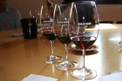 Wine tasting of joven, crianza and reserva wines at Bodegas Emilio Moro